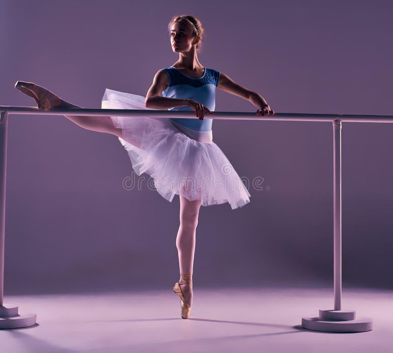摆在芭蕾纬向条花的经典芭蕾舞女演员 库存照片