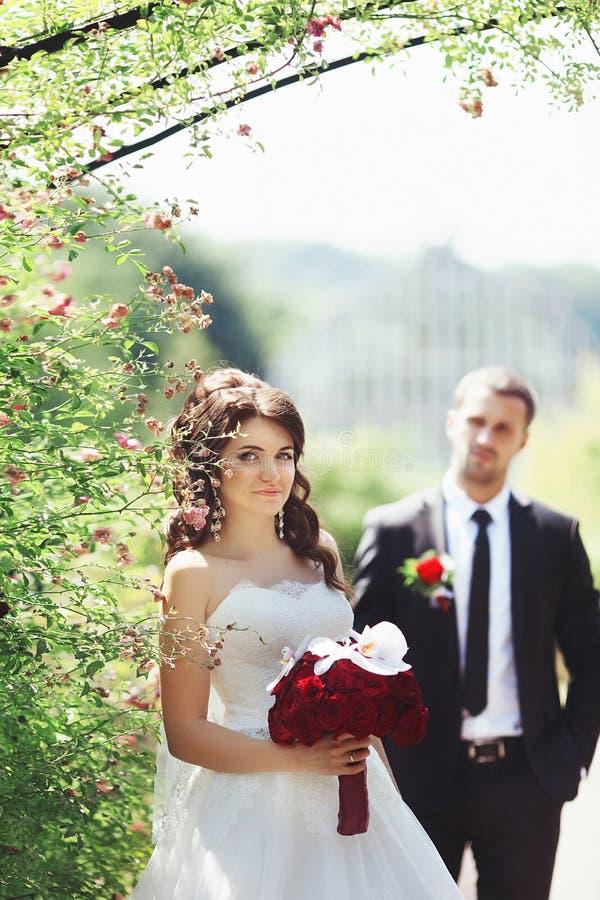 摆在花灌木的新娘&新郎在公园 免版税库存照片