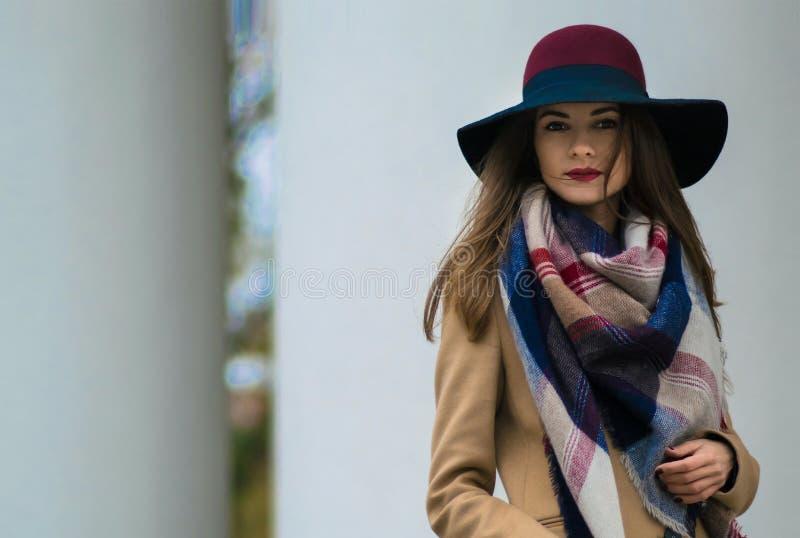 摆在街道上的年轻美丽的时兴的愉快的夫人 免版税图库摄影