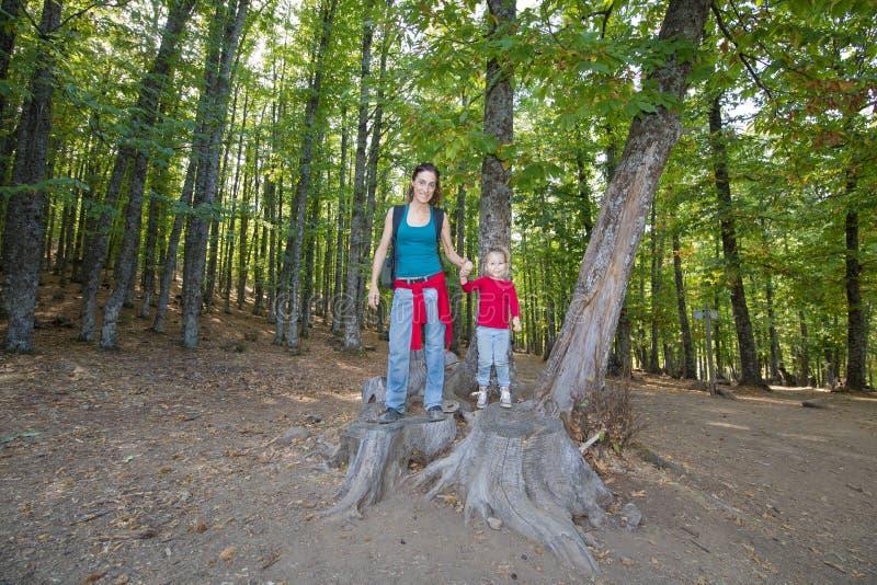 摆在被切开的树干的母亲和孩子在栗树森林里  免版税图库摄影