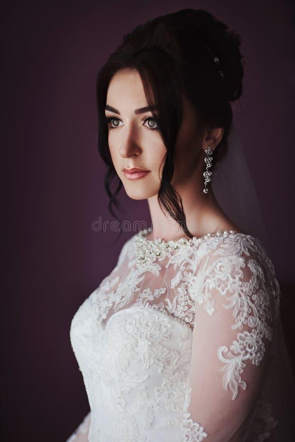摆在里面旅馆客房的华美的深色的新娘在仪式前 库存图片