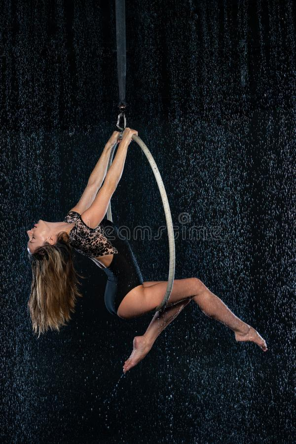 摆在黑水色演播室背景的空中箍的年轻美丽的亭亭玉立的马戏艺术家 免版税库存照片