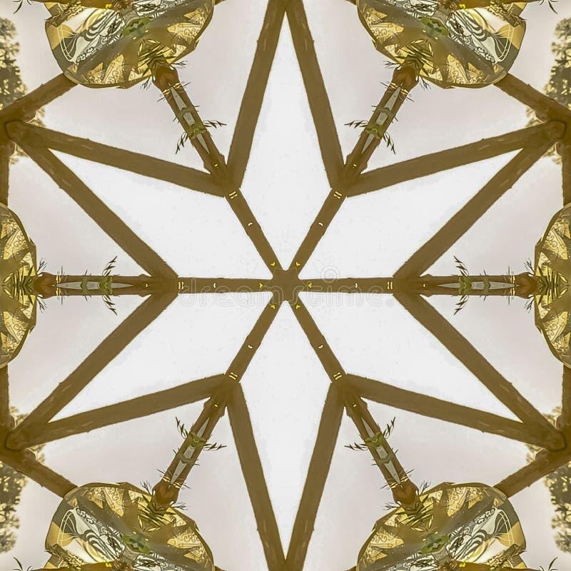摆正由装饰Chuppah日落做的星形状 皇族释放例证