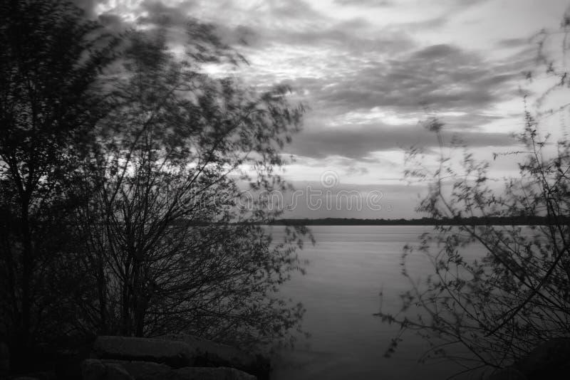 Download 摇摆在风的树在黄昏 库存照片. 图片 包括有 环境, 微明, 室外, 结构树, 自然, 季节, 有风, 孤独 - 72370712
