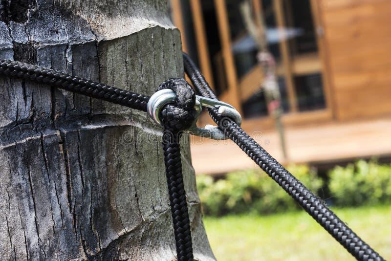 摇篮的摇篮对椰子的 免版税图库摄影