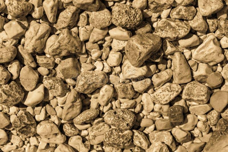 摘要小卵石石纹理 库存照片
