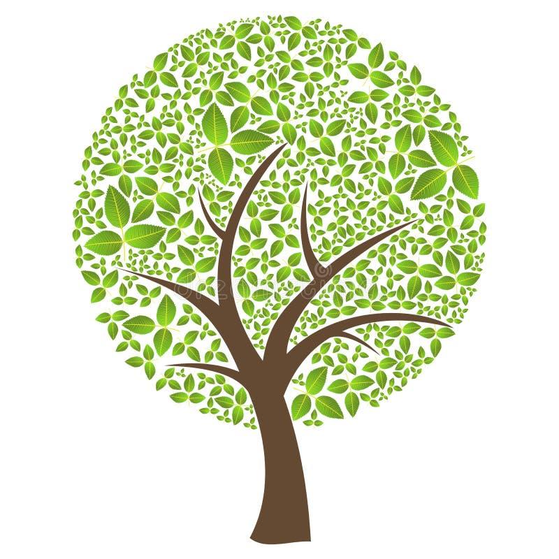 摘要查出板簧时间结构树 皇族释放例证