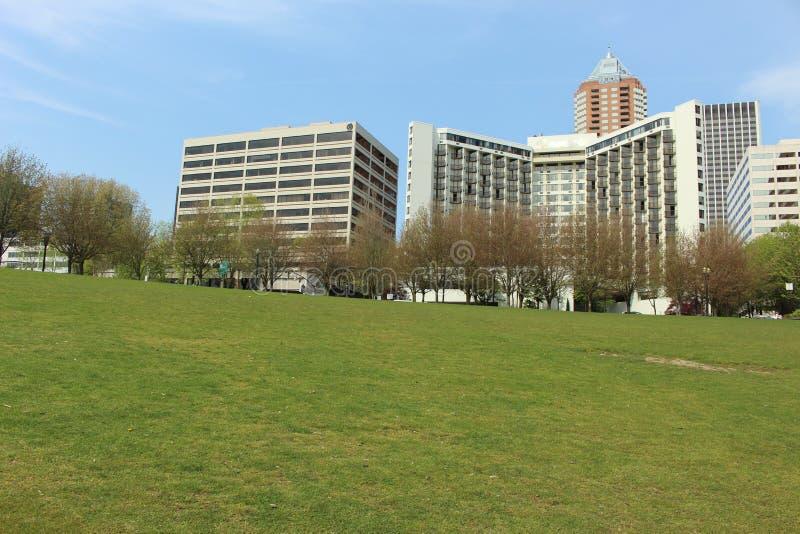 摩天大楼和绿色领域 免版税图库摄影