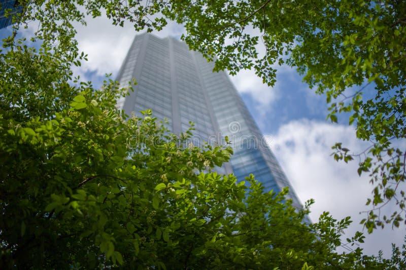 摩天大楼天空蔚蓝街市卡尔加里阿尔伯塔 库存图片