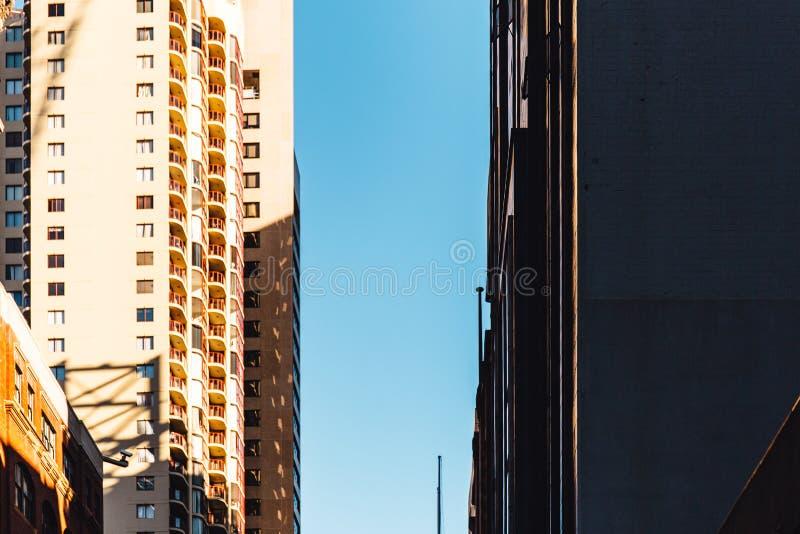 摩天大楼营业所,公司大厦Windows  免版税图库摄影