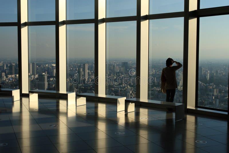 摩天大楼视图 免版税库存图片