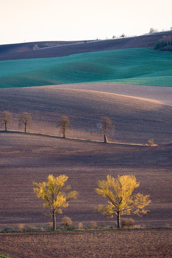 摩拉维亚的秋天小山 免版税库存图片