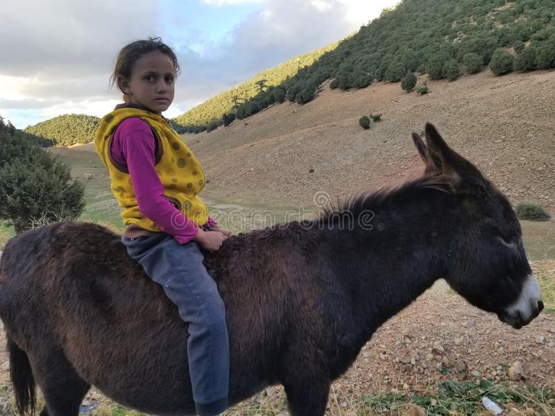 摩洛哥女孩骑马驴摩洛哥北部 免版税库存图片