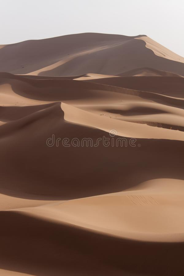 摩洛哥撒哈拉沙丘  库存照片