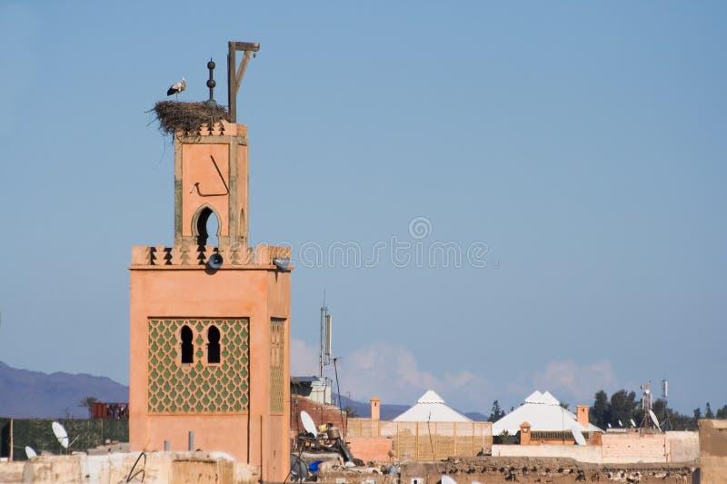 摩洛哥清真寺 库存照片