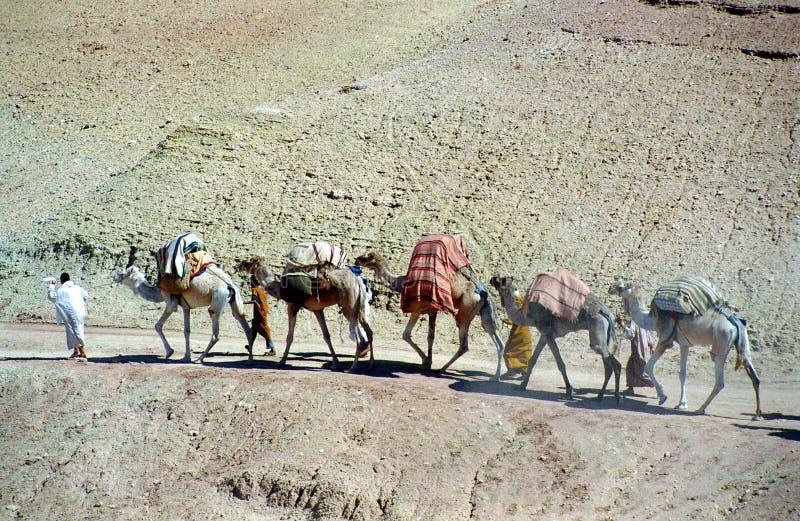 摩洛哥香客 免版税库存照片