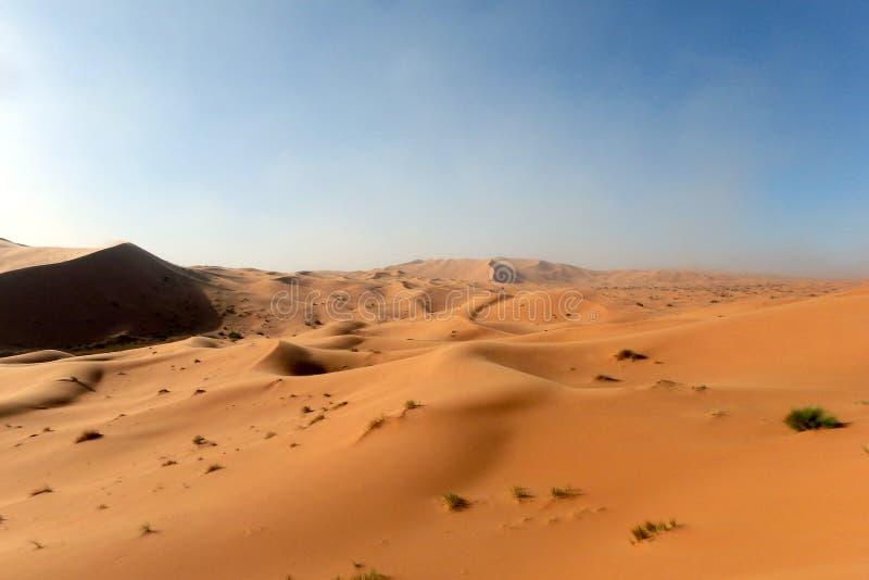 摩洛哥的沙丘 免版税库存图片