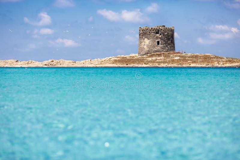 撒丁岛海滩- La Pelosa 库存图片