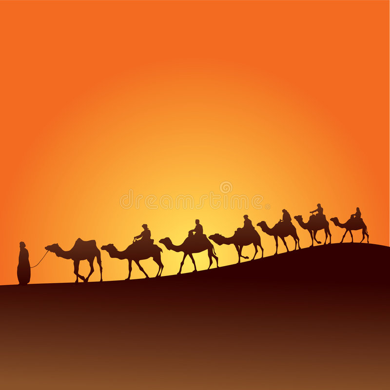 撒哈拉大沙漠和骆驼