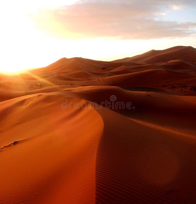 撒哈拉大沙漠的土地 免版税库存照片