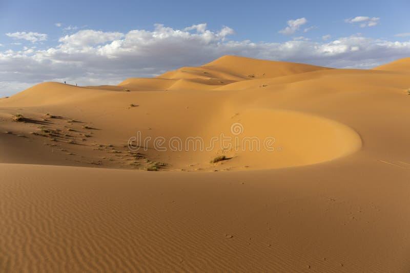 撒哈拉大沙漠,尔格Chebi沙丘 Merzouga,摩洛哥 免版税库存图片