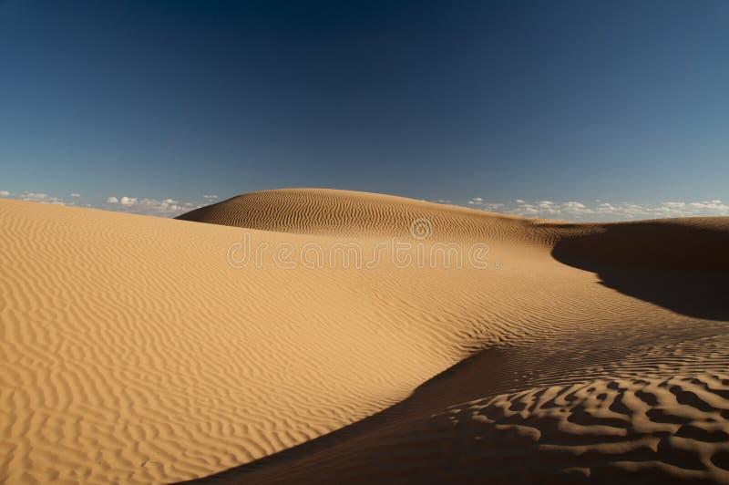 Download 撒哈拉大沙漠 库存照片. 图片 包括有 尔格, 闹事, 干净, 无限, 结算, 失去, 迷宫, 本质, 埃及 - 22351542