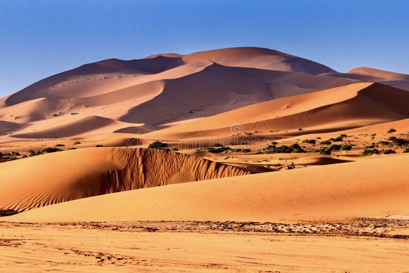 撒哈拉大沙漠Merzouga Marocco 免版税库存照片