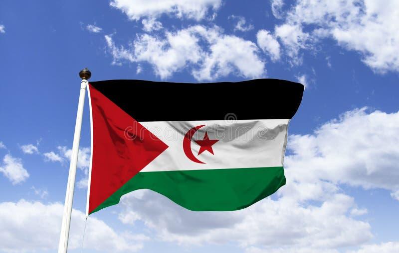 撒拉威阿拉伯民主共和国的旗子 免版税库存图片