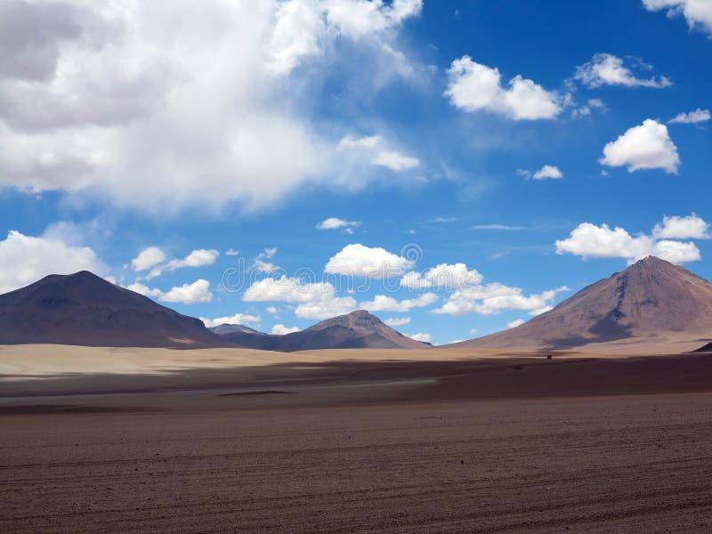 撒拉族de Uyuni玻利维亚 免版税图库摄影