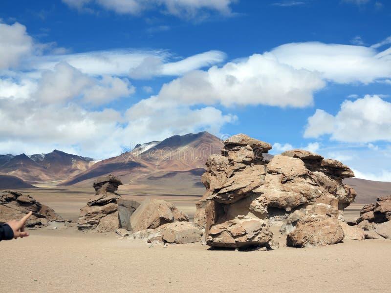 撒拉族de Uyuni玻利维亚 免版税库存照片