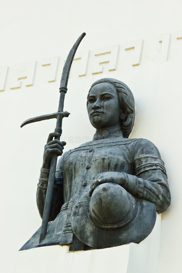 撕毁战斗机女王/王后泥沼  免版税库存照片