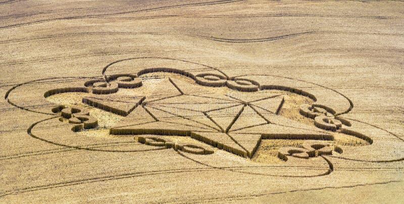 播种圈子出现在领域- unbeliev 免版税图库摄影