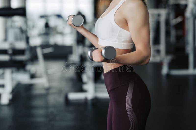 播种的身体关闭举行重量哑铃的体育衣裳的年轻可爱的妇女做在健身房的健身锻炼 免版税库存照片