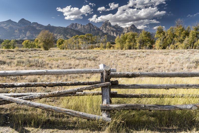 操刀在变貌麋Tetons国立公园怀俄明的教堂 免版税库存照片