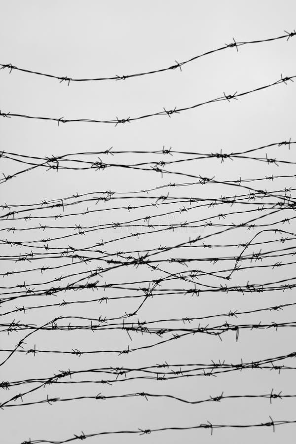 操刀 有刺的范围电汇 让 监狱 刺 封锁 一个囚犯 浩劫集中营 囚犯 压抑backgr 库存照片