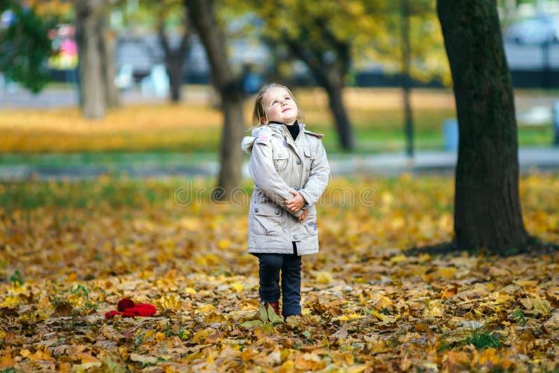 操场的逗人喜爱的小女孩在秋季公园 免版税库存照片