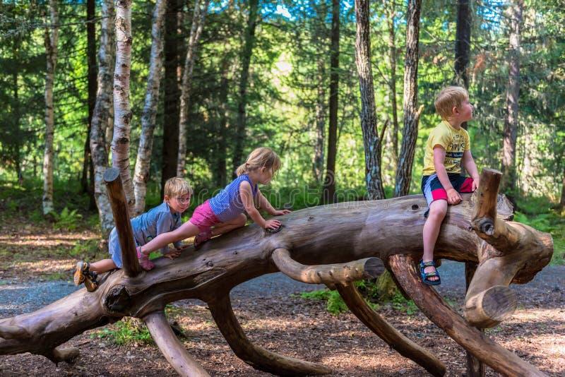 攀登在大注册森林的兄弟姐妹 免版税库存图片