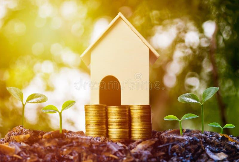 攒钱,房屋贷款,抵押,未来概念的物产投资 在堆的一个小屋模型硬币和生长 免版税库存照片