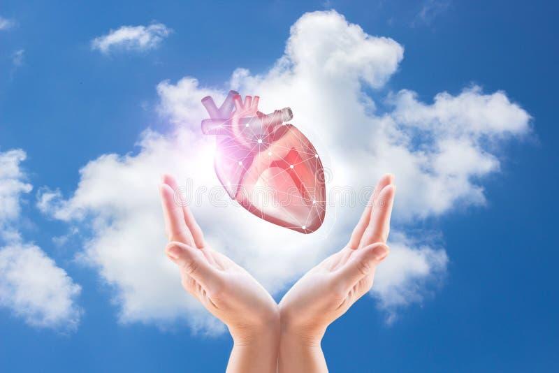 图片 包括有 生活, 重点, 背包, 医疗, 教育, 心脏科医师, 医生图片