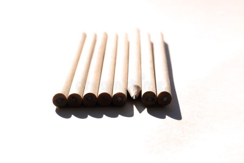 8支铅笔在桌上在明亮的白天 自然没有漆的木头 E 不象所有的人 库存照片
