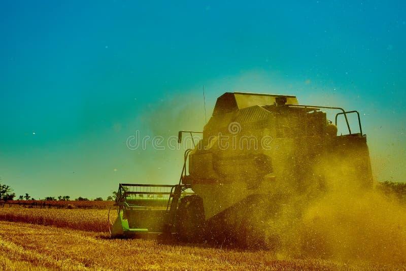 收割机联合收获麦子在夏日 免版税图库摄影