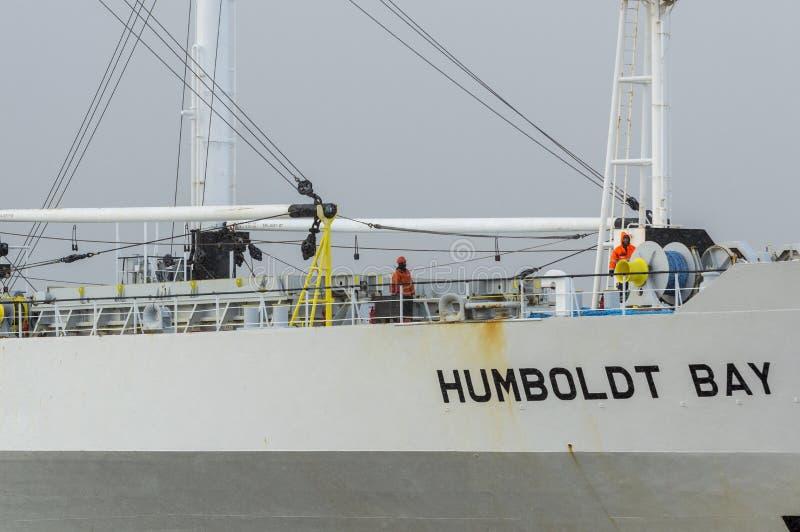 收帆水手洪堡海湾甲板的机务人员  库存图片