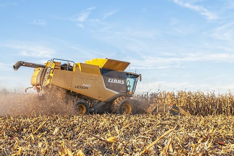 收获中西部玉米庄稼 库存图片