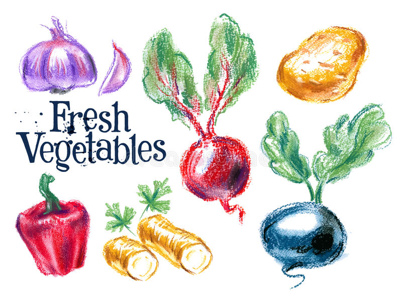 收获传染媒介商标设计模板 新鲜的食物 向量例证