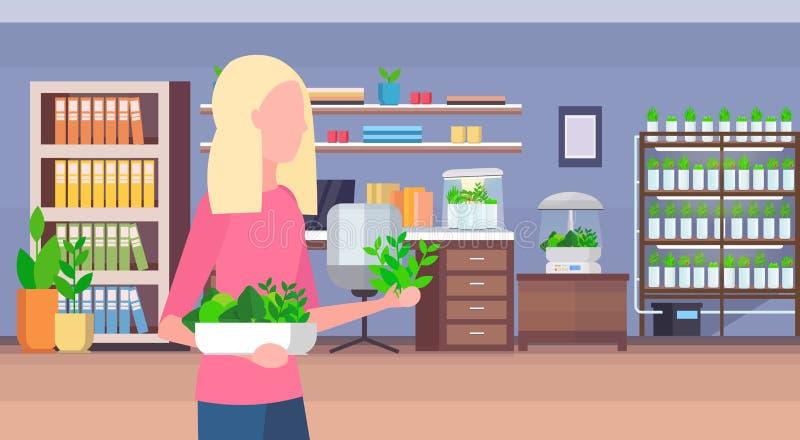 收获另外有机沙拉的妇女离开生长系统概念的聪明的植物现代家庭工作场所内阁 向量例证