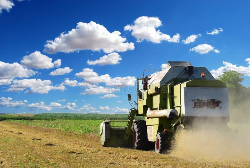 收获大麦的收割机在夏天 库存图片