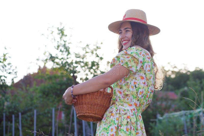 收获新鲜水果的年轻女人 库存图片