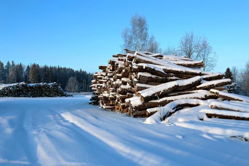 收获木材注册冬天和积雪的路 免版税图库摄影