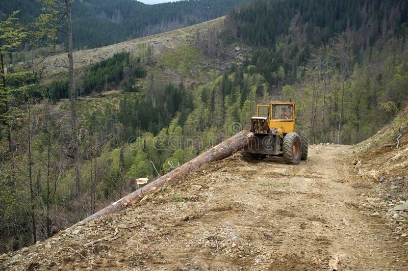 Download 收获木材 库存图片. 图片 包括有 拖拉机, 阿富汗尼的, 木材, 木头, 林业, 记录, 收获, 森林 - 72363427