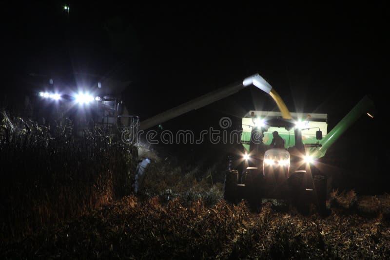 收获玉米在农村衣阿华 免版税库存图片